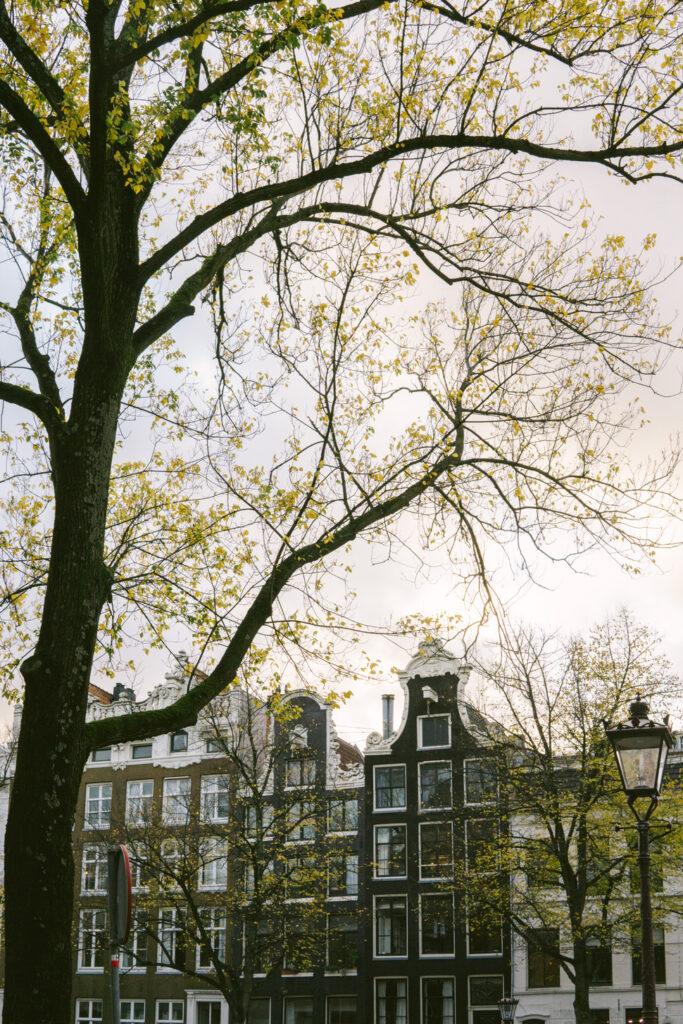 Autumn in Amsterdam center Jordaan