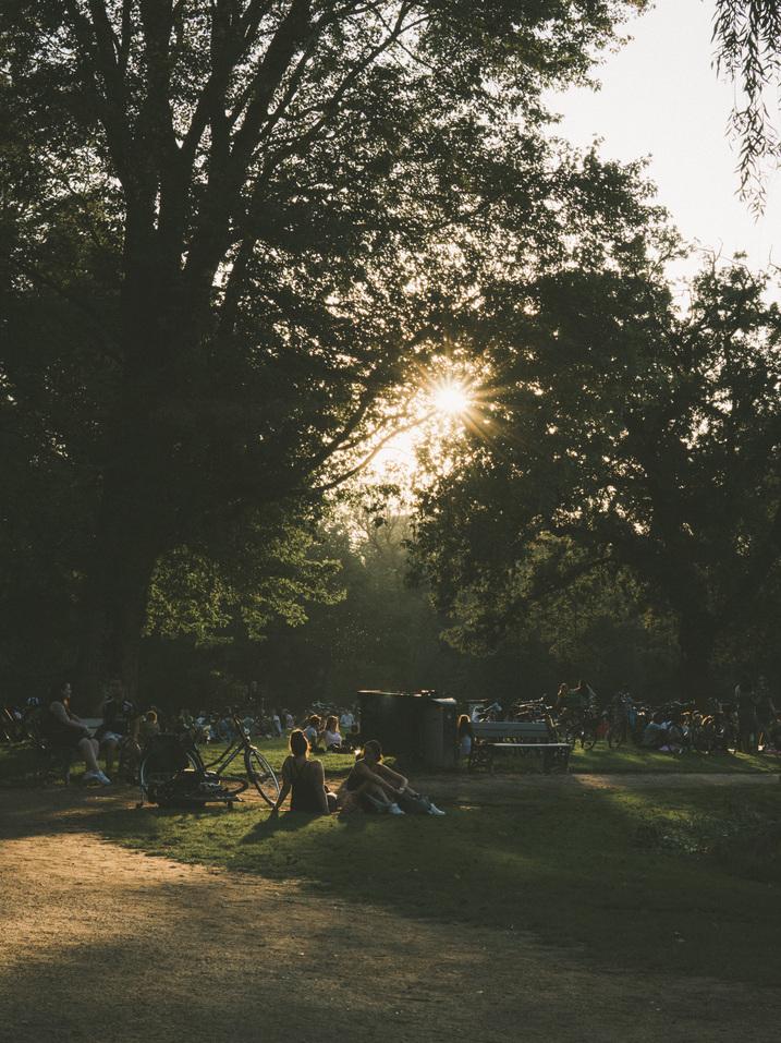 Vondelpark summer Amsterdam