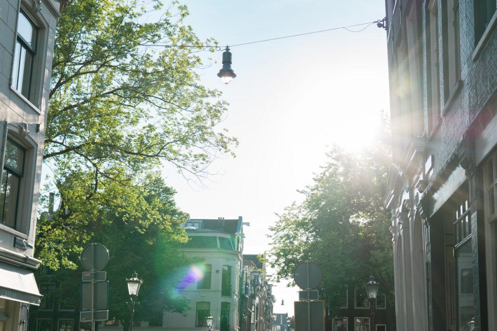 bliss sun rays Amsterdam